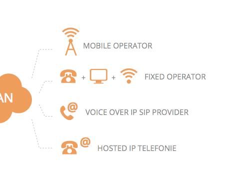 telecom audits